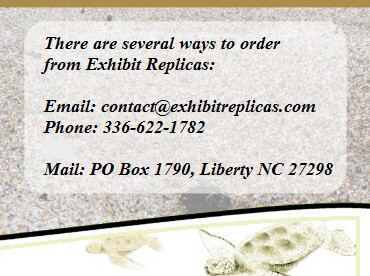 Contact Exhibit Replicas to place your order for crustacean, animal, fish or bird replicas